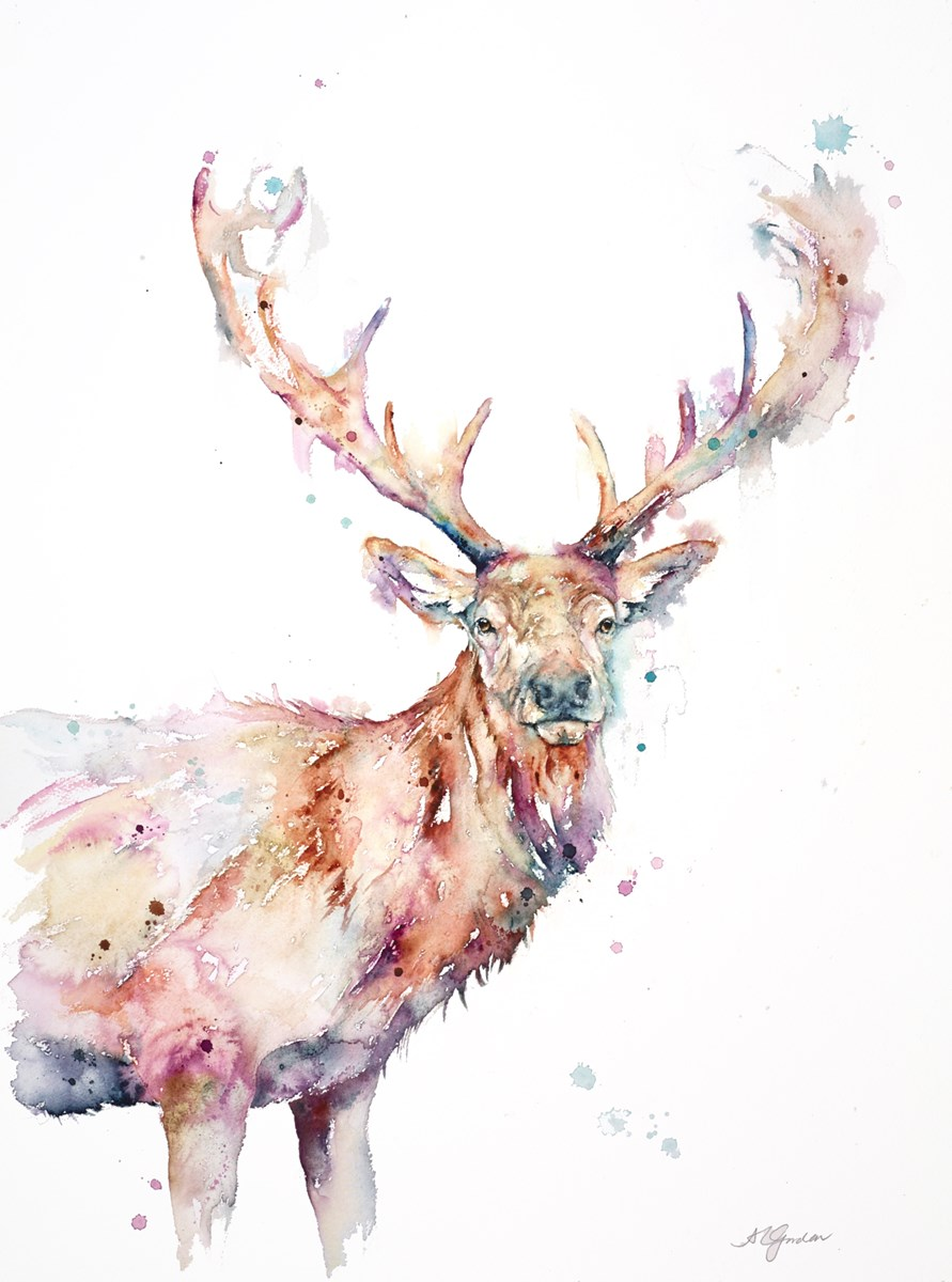 Wise Red Stag